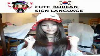 Cute Korean Sign Language (KSL)