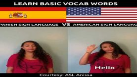 Learn Basic Vocab Words in Spanish Sign Language (SSL) VS American Sign Language (ASL)