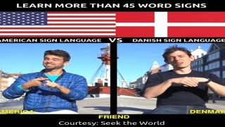 Learn More Than 45 Word Signs in American Sign Language Vs Danish Sign Language
