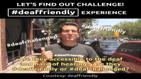 Let's Find Out Challenge: Deaf-Friendly Experience