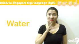 Singapore Sign Language (SgSL) Lesson: Beverage-Related Words