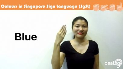 Singapore Sign Language SgSL Lesson: Colours