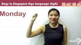 Singapore Sign Language SG
