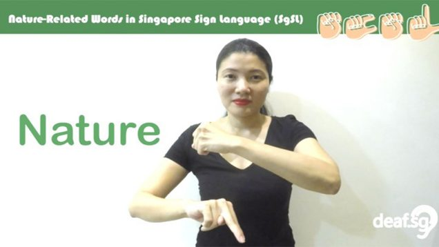 Singapore Sign Language (SgSL) Lesson: Nature-Related Words