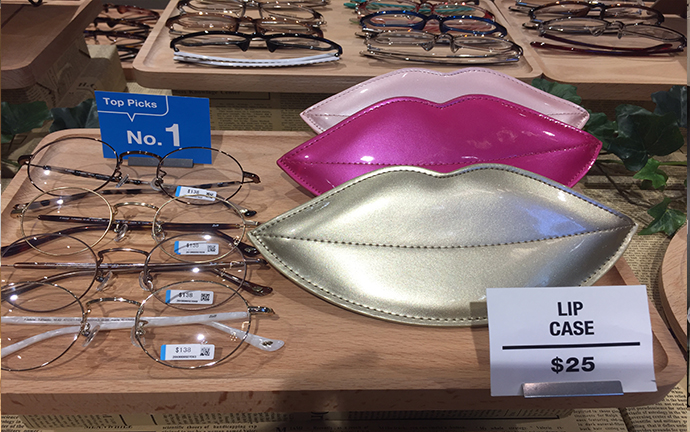 snazzy lip cases