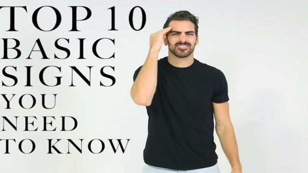 TOP 10 Basic Sign Languages For Beginners